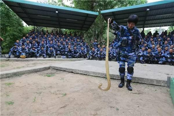 蓝色突击-2016:中国陆战女兵在泰国空手抓眼镜蛇