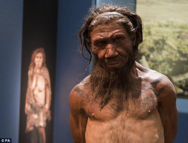 人或是其他任何人种都活得更久,但根据最新的发现,我们也不是没有