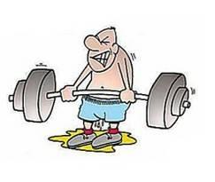 健身新手增肌计划 省去教练更省心 - 健康 - 东
